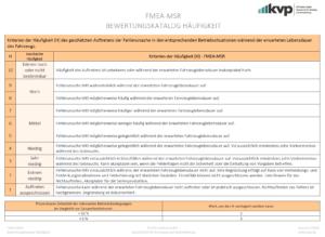 FMEA-MSR-Bewertung-der-Häufigkeit